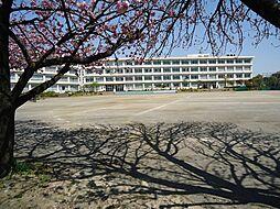 町田第二中学校...