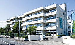 仙台市立富沢