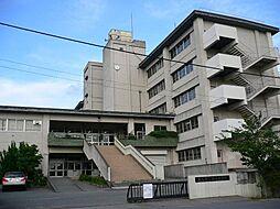 中学校新栄中学...