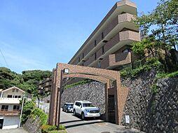 ライオンズマンション鎌倉日坂