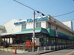 万代尺土店