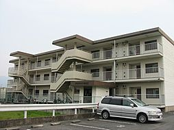 グランドハイツ杉田[2階]の外観