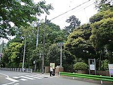 周辺環境:宝来公園