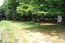 中丸緑地公園(...