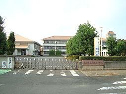 関城東小学校ま...