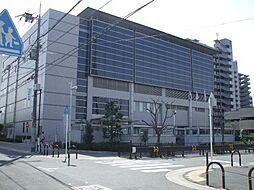 茨木市立東体育...