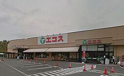 エコス 川口店...