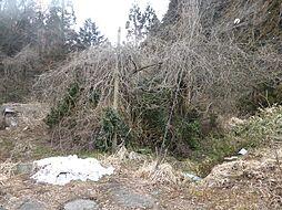 福井市大森町