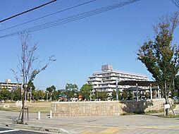 高木公園(35...