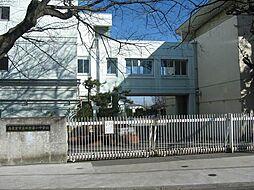 田無第一中学校...