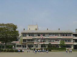 学区 菅谷東小...