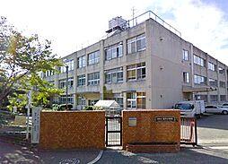 小学校阪南市立...