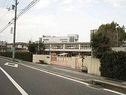 平野幼稚園 約...