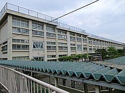青梅第三小学校...
