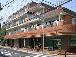 東京都練馬区北町3丁目の賃貸マンションの外観