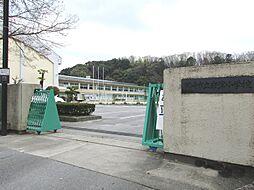 岩津小学校(学...