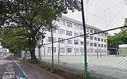 海老名中学校(...