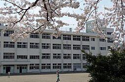 鹿野小学校