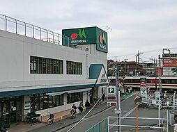 マルエツ柿生店...