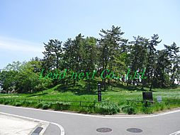 公園八幡山公園...