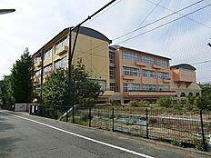 世田谷区立東深沢中学校(約1000m徒歩13分)