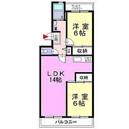 神奈川県南足柄市関本の賃貸マンションの間取り