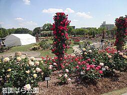 若園バラ公園 ...