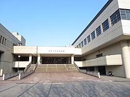 栃尾体育館です...