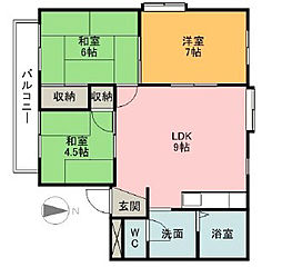 愛媛県松山市枝松2丁目の賃貸マンションの間取り
