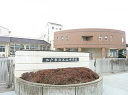 中学校水戸市立...