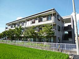 長野県茅野市宮川の賃貸マンションの外観