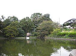 立野台公園