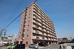 愛知県あま市上萱津北ノ川の賃貸マンションの外観