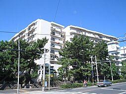 パレ平塚すみれ平壱番館 1