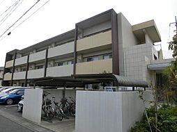 埼玉県さいたま市中央区八王子の賃貸マンションの外観