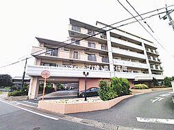 レグザ東松山