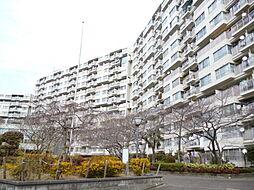 近鉄南港ガーデンハイツ 23号棟 中古マンション