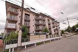 明石駅 4.6万円
