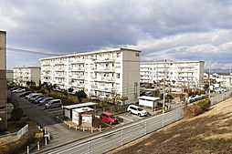 五社駅 3.3万円