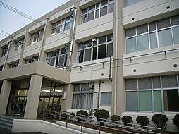 志津小学校