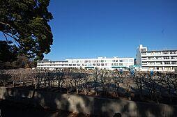 市立東金子中学...