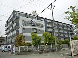 兵庫県尼崎市水堂町3丁目の賃貸マンションの外観