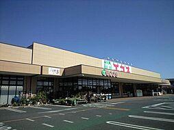 エコス小川店