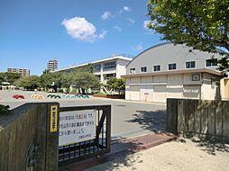 小学校久里浜小...