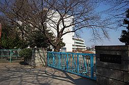 上新井小学校