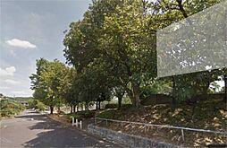 ジャンボ公園(...