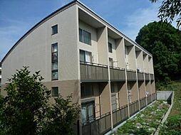 サンヴィアーレA[108号室]の外観