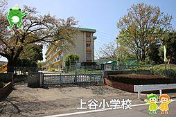 上谷小学校(9...