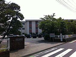 菖蒲小学校徒歩...