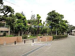 長洲公園  3...